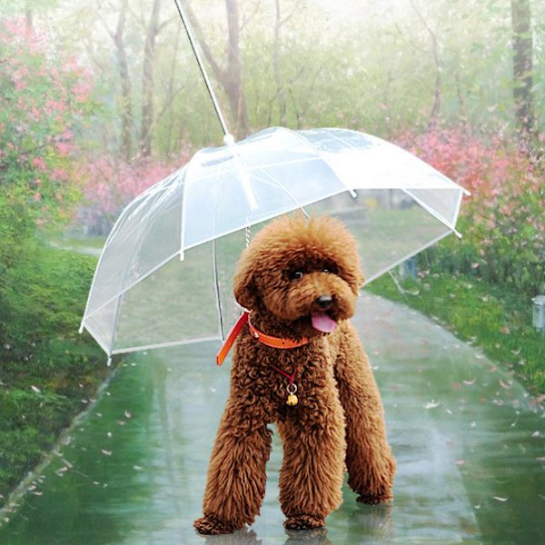Hot-Sale-Cute-Fashion-Transparent-font-b-Dog-b-font-Puppy-Pet-font-b-Umbrella-b